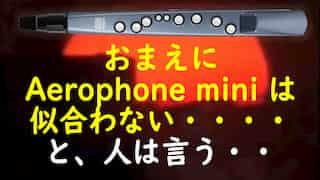 ■演奏動画など■